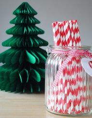 Red Stripe Paper Eco Straws - Normal length 200mm/6mm - 250 straws pack